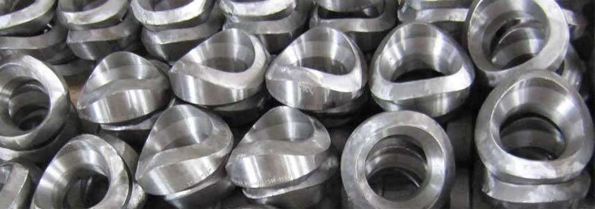 ASTM A182 SS 317 Outlet Fittings Manufacturer